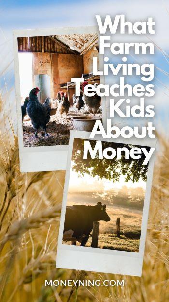 O que a vida na fazenda ensina as crianças sobre dinheiro 11