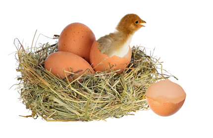 How to Build a Nest Egg While Your Kids Are Still in the Nest