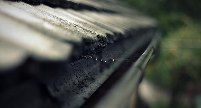 Spring gutter cleaning is it cheaper to do it yourself or hire a spring gutter cleaning is it cheaper to do it yourself or hire a contractor solutioingenieria Image collections
